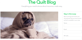 The Quilt Blog