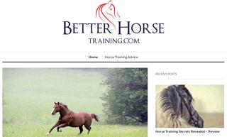 Better Horse Training