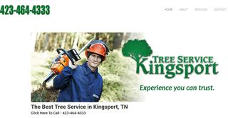 Tree Service Kingsport