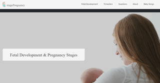 stagePregnancy - Everything You Wanted to Know About Pregnancy