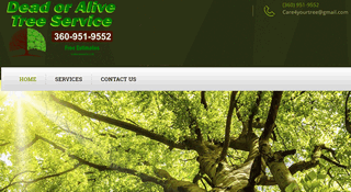 Tree Service Olympia WA