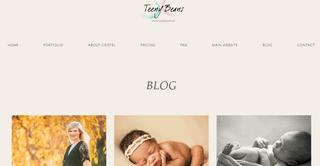 Bog - Raleigh, Durham & Chapel Hill Newborn Baby Photographers