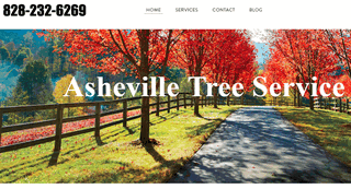 Tree Service Asheville