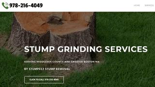 Stump Removal Service MA