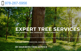 Tree Removal North Andover MA